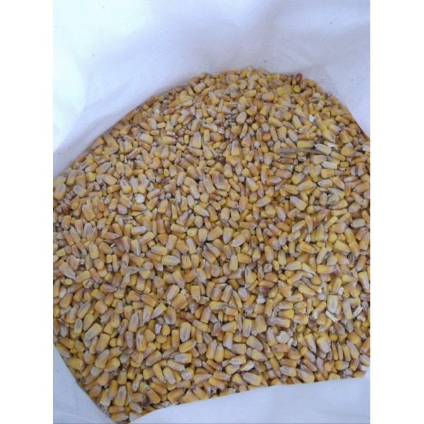 Kukurica kŕmna 25 kg